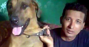 فى واقعة تعذيب الكلب السجن 3 سنوات مع الشغل والنفاذ لـ3 متهمين