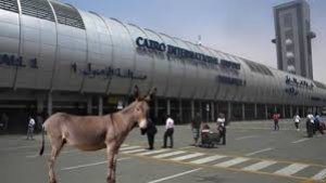 """وزير الطيران يأمر بالتحقيق في حادثة """"الحمار في المطار"""""""