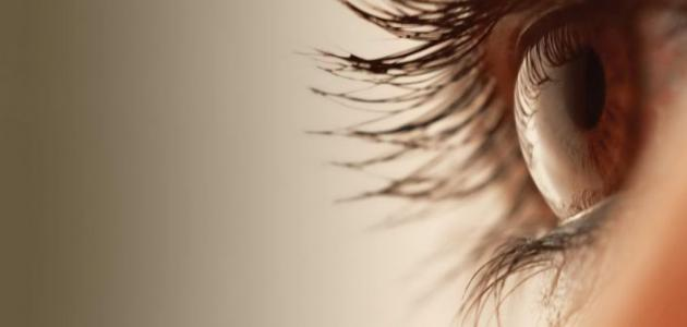 أسباب رفة العين اليمني واليسري