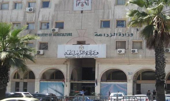 وزارة الزراعة: اكتشاف بؤرة إصابة بفيروس إنفلونزا الطيور