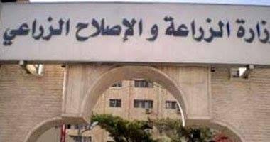 حبس وكيل وزارة الزراعة السابق بتهمة أستغلال المنافذ التابعة لمديرية الزراعة