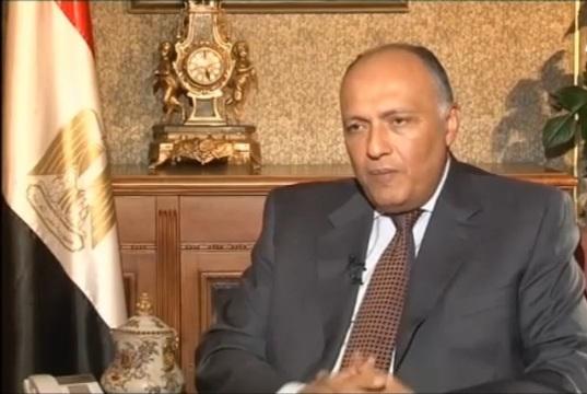 سامح شكرى : أي حل سياسي يعيد الاستقرار لسوريا يتعين مروره عبر بوابة الحفاظ على وحدة الدولة