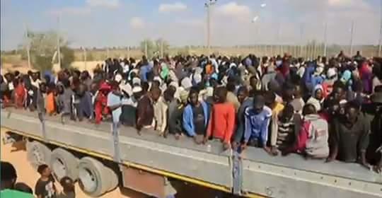 """مرصد الأزهر يثمّن جهود السلطات النيجيرية في دحر جماعة """"بوكو حرام"""" الإرهابية"""