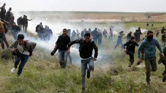 مرصد الأزهر يدين عمليات القتل ضد الشعب الفلسطيني الأعزل|صور