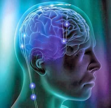 علماء يكتشفون.. دائرة كهربائية فى المخ مسئولة عن الإفراط فى تناول الطعام