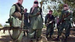مرصدالأزهر يدين إعدام اثنين من الكينين على أيدي حركة الشباب الصومالية